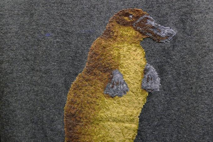 ShirinSabahiOrnithorhynchusParadoxus06